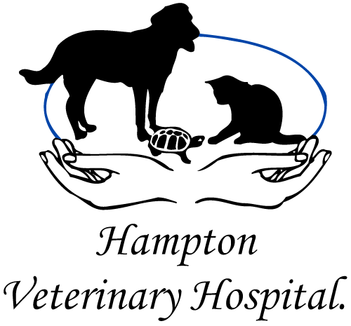 Hampton Veterinary Hospital